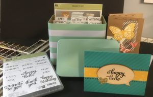 Tin of Cards Project Kit, 138378