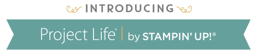 Introducing Project Life banner