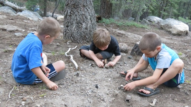 5 yr olds building bug houses