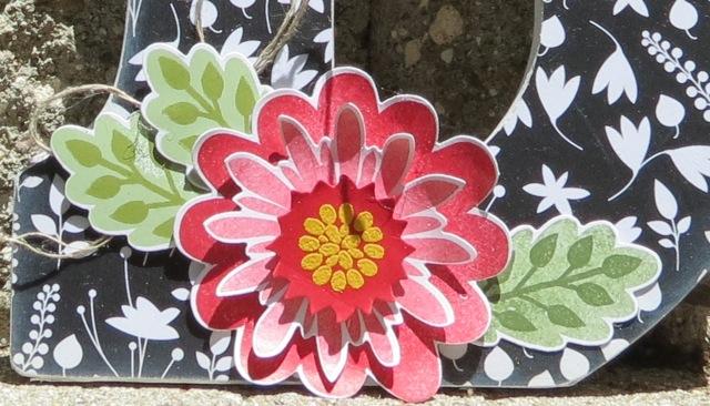 Bottom Flowers close up