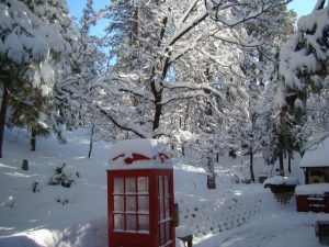 Klipple's phone box in snow