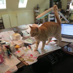 Fred takes over my work space