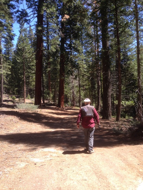 Russ walking towards Strawberry Creek