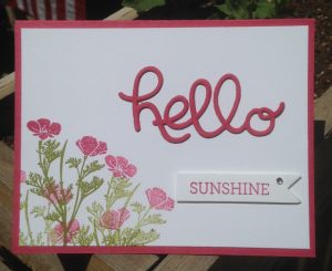 Hello Thinlits Dies card using Crazy about You stamp set (137137)