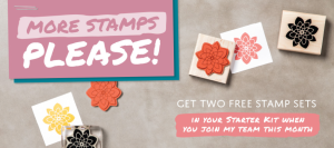 Join my Stampin' Up! team in June