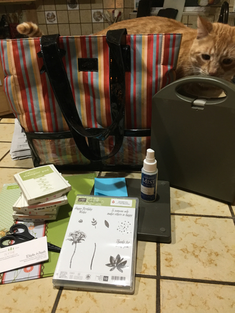 STAMPIN' UP! CONVENTION bag and supplies