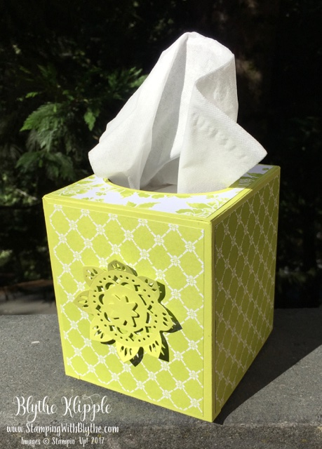 Tissue box with Medallion