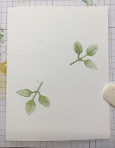 Leaf placement