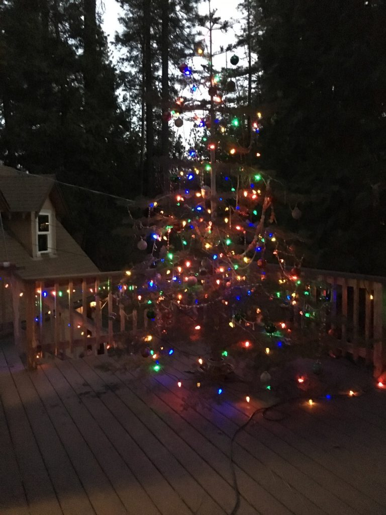 our Charlie Brown Christmas tree for 2017
