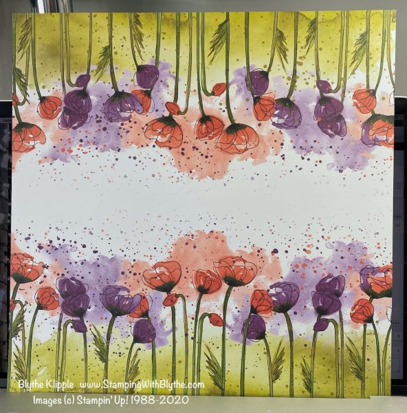 Peaceful Poppies 12 x 12 DSP
