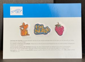 SU! On Stage Nov 5-7, 2020, swag box contents - our swapping pins