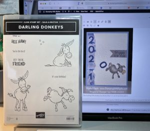 Darling Donkeys & New Year card