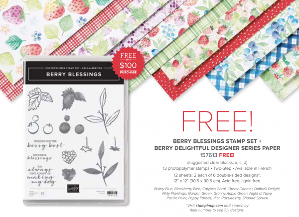 Berry Blessings Stamp Set + Berry Delightful DSP, 157613