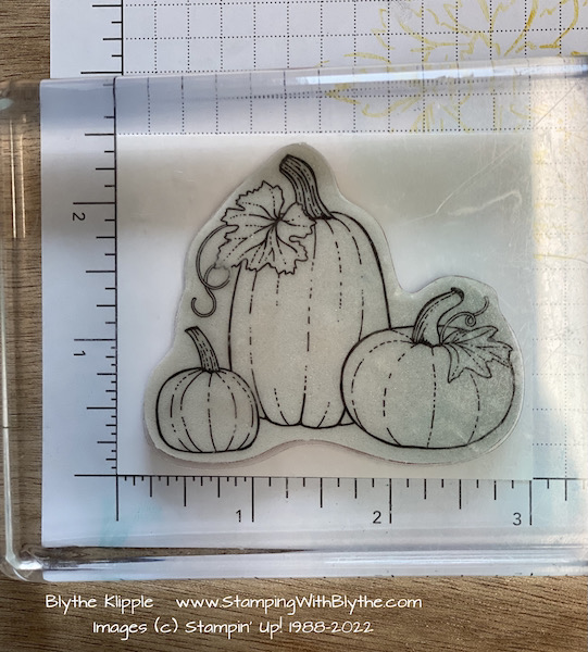Stamping the pumpkins and vines